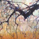 Ernie Gallegos tree