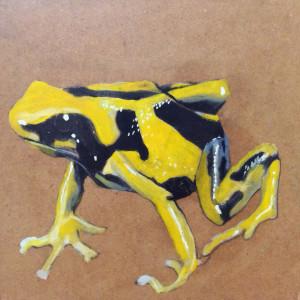 Yellow Frog $200